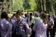 Girls crowd. Group of girls in purple suits stock photography