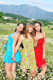 Girls in daisy field Stock Images