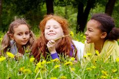 Girls with dandelions Royalty Free Stock Photo