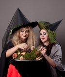 Girls dining mushrooms. Girls make up as witches, dining mushrooms Royalty Free Stock Photo