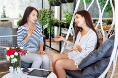 Girls discuss business cafe portrait two young girlfriend successful attractive women friend conversation place life style leaves stock images