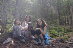 Girls with dog in woods Royalty Free Stock Image
