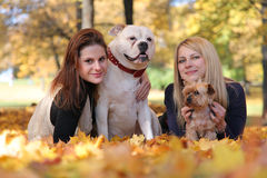 Girls with dogs Stock Photos
