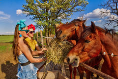 Girls feeding her horses Stock Image