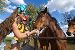 Girls feeding her horses Royalty Free Stock Photography