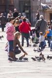 Girls feeding pigeons Royalty Free Stock Image