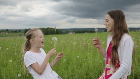 Girls in the field blowing on dandelion in hand stock footage
