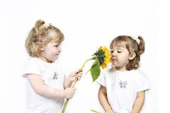 Girls with flower Stock Photo
