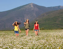 Girls on the flower meadow Royalty Free Stock Photos
