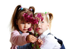 Girls and flowers. Royalty Free Stock Photos