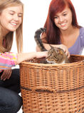 Girls friends with cat Stock Images