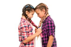 Girls friends similar hairstyle braids white background. Sisters family look. Kanekalon hairstyle. Long hair hairstyle stock photo
