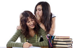 Girls friends whispering while studying Royalty Free Stock Image