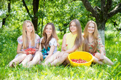 Girls gathering strawberry on bright summer day Royalty Free Stock Photos