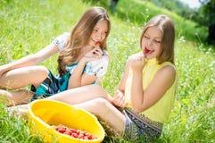 Girls gathering strawberry on bright summer day Royalty Free Stock Image
