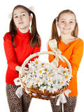 Girls gives a bouquet of white flowers Royalty Free Stock Photo