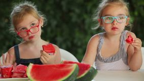 Girls in glasses eat a delicious juicy watermelon. Two girls in glasses eat a delicious juicy watermelon in the fresh air stock video