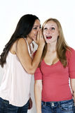 Girls gossip Stock Photography