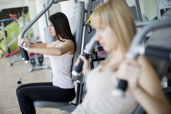 Girls in the gym. Young girl taking exercise in the gym Royalty Free Stock Photo