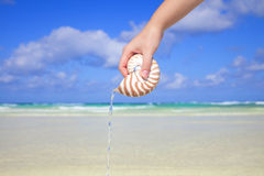 Girls hand pouring water from nautilus shell Stock Photography