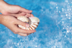 Girls hands holding nautilus shell full of water Royalty Free Stock Photos