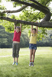 Girls Hanging From Tree Branch Royalty Free Stock Photography