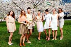Girls have a spring celebration in Vilnius city Royalty Free Stock Image