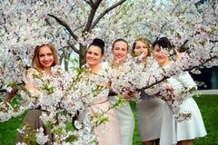 Girls have a spring celebration in Vilnius city Stock Image