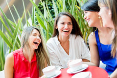 Girls having a coffee Stock Image