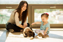 Girls having fun with their puppy Royalty Free Stock Images