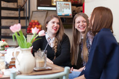 Girls having a small talk in coffee shop Royalty Free Stock Image