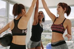 Girls high five after successful workout session. Cheerful women with medicine ball putting their hands together at fitness studio. Girls high five after Stock Photo