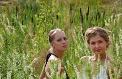 Girls between high grass Stock Photo