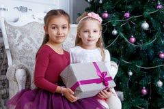Girls holding big gift-box under Christmas tree Royalty Free Stock Image