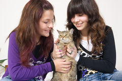Girls holding cat Stock Photography