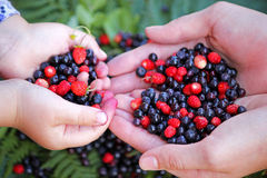 Girls holding forest berries in open palms, close up. Royalty Free Stock Photography