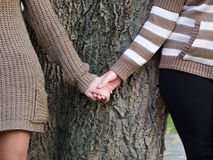 Girls holding hands against tree bark in autumn Stock Photography