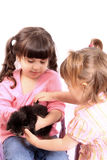 Girls holding kitten Royalty Free Stock Image