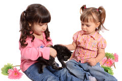 Girls holding kitten Stock Photography
