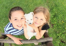 Girls holding a puppy stock photography