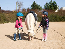 Girls before horse riding Stock Image