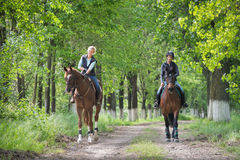 Girls on horseback riding Royalty Free Stock Image