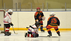 Girls ice hockey match Stock Image