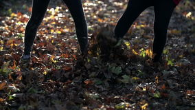 Girls kick autumn leaves one toward another stock video