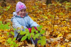 Girls kid smiling in autumn leaves background Stock Image