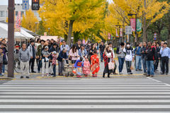 Girls in Kimono dress, Japan. Hyogo, Japan - November 20, 2016: Girls in Kimono dress and many people are waiting to cross the street near Himeji Castle, Hyogo stock photos