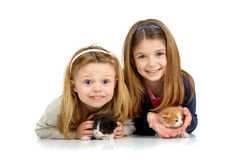 Girls with kittens Stock Image