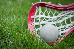 Girls lacrosse head and grey ball on grass stock photography