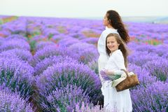 Girls are in the lavender flower field, beautiful summer landscape royalty free stock photo