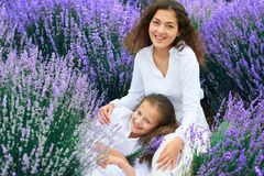 Girls are in the lavender flower field, beautiful summer landscape stock photo